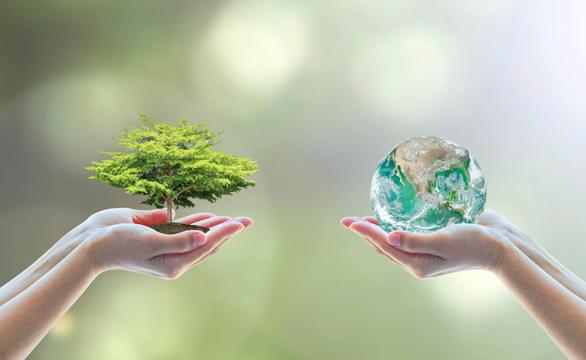 Problemas con el medio ambiente